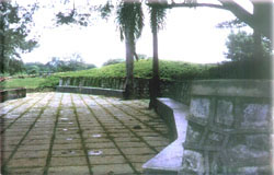 Mahavir Park, Pavings and Mounds