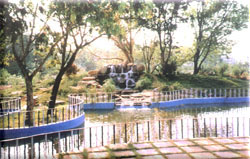 Mahavir Park, Waterfall